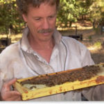 Puget Sound Beekeepers May 18 Field Day