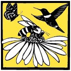 """Bee a Pollinator"" Launches in Thurston County"