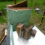 Honey bee hives and smoker